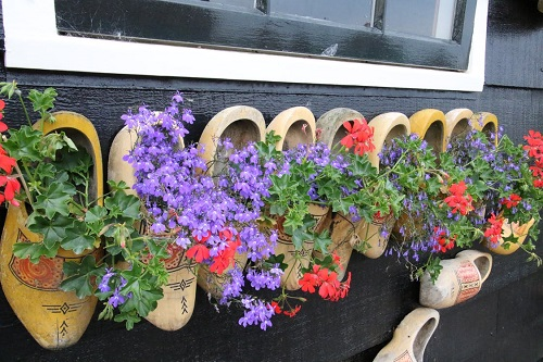 clogs as flower pots