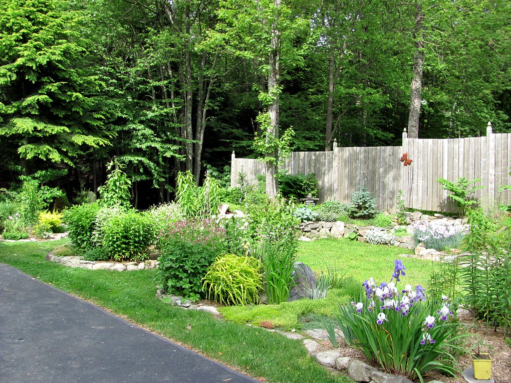 a backyard in neat and squared lay out.