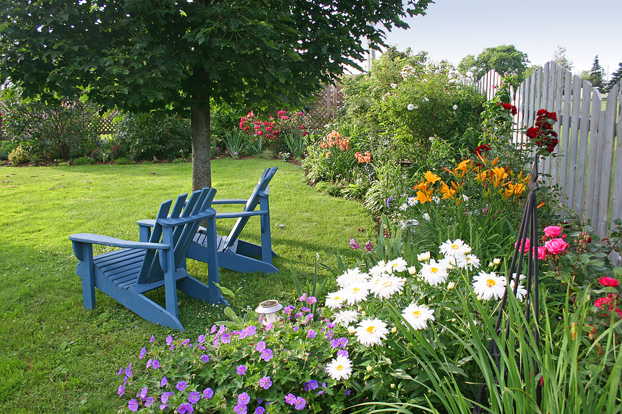 backyard with blue wood chair and surrounds by a flower and green garden grass